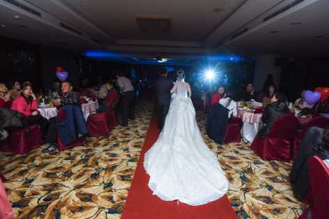 Wedding_Photo_2017_-013